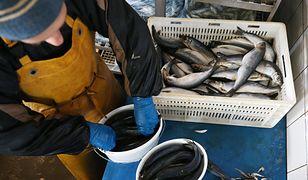 Ceny ryb jeszcze wzrosną. Pandemia zrobiła swoje