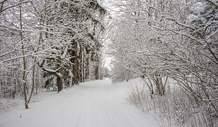 Zima trzydziestolecia w Polsce