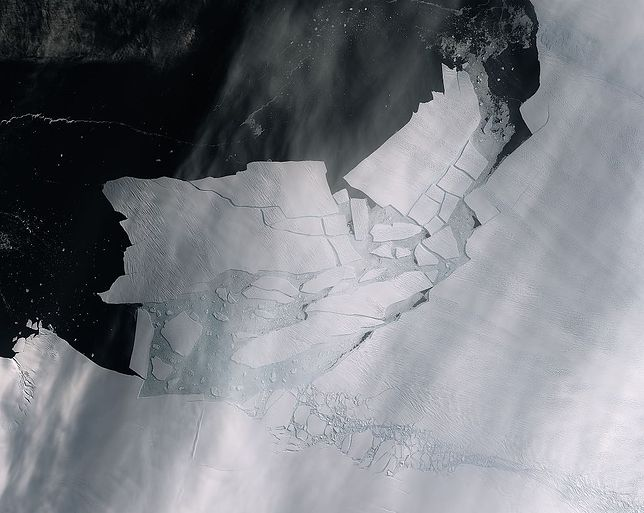 Antarktyda. Z lodowca Pine Island oderwała się góra lodowa wielkości Krakowa.