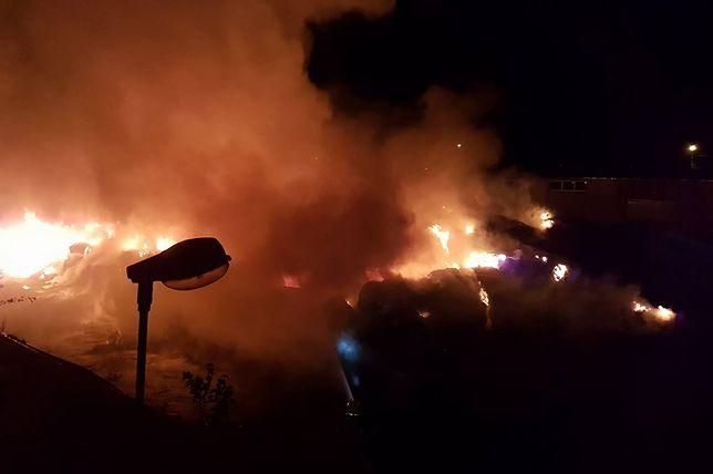 Kolejny pożar wysypiska śmieci. Gasiło go 13 zastępów straży pożarnej
