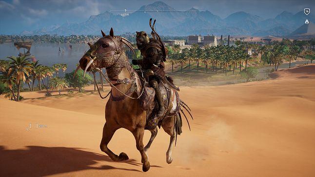 Miś na koniu. Patataj :)