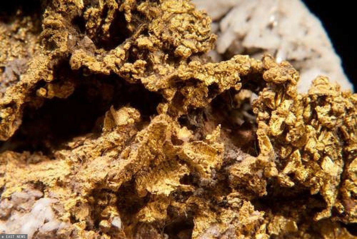 Czechy. Pod ziemią znajdują się ogromne złoża złota / Zdjęcie ilustracyjne