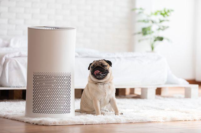 Idealne powietrze w domu zapewni ci pełen komfort