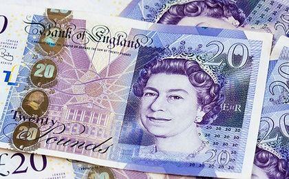 Bank Anglii: olej palmowy zamiast łoju zwierzęcego w banknotach. Orangutany nie będą zadowolone