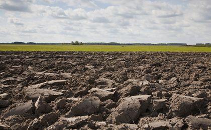 ANR: ceny ziemi rolnej idą w górę