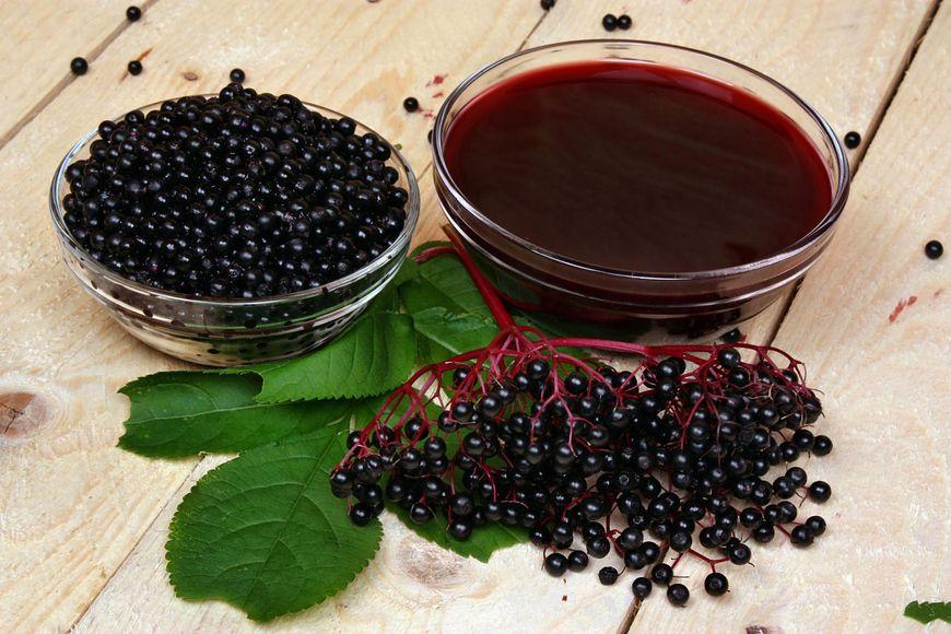 Czarny bez  jest składnikiem wielu preparatów zielarskich i aptecznych
