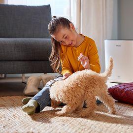 Ważny temat – Zdrowsze i czystsze powietrze z nawilżaczem i oczyszczaczem