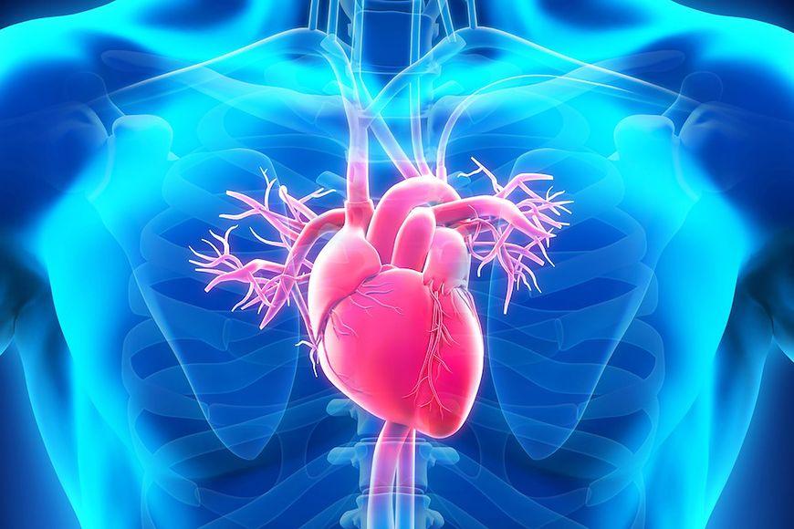 Zachowanie zdrowego serca