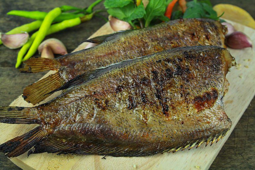 Ryby zawierają kwasy omega-3