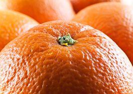 Komu potrzebne są pomarańcze?