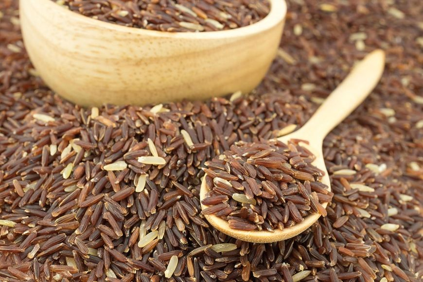 Kiełkujący ryż to bogactwo wielu składników odżywczych