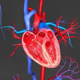 Czy kołatanie serca to objaw nerwicy?