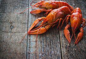 Makaron z homarem i szczypiorkiem. Pomysł na uroczystą kolację