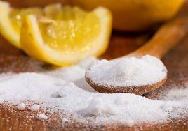 Cytryna z solą. Sprawdź, jak może działać na organizm