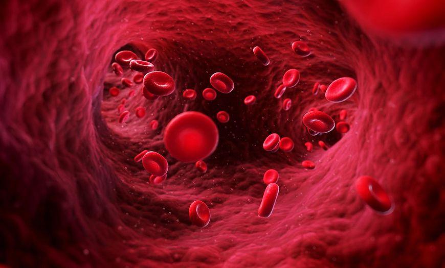 W ciągu doby przez nerki przepływa prawie 4000 litrów krwi, czyli pojemność 20 wanien