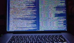 Rząd kontra hakerzy. Kończą pracę nad specjalną strategią