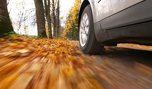 Jesień zastawia na kierowców wiele pułapek