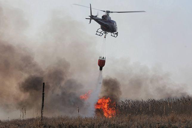Biebrzański Park Narodowy płonie. Dym dotarł nad Warszawę