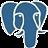 pgAdmin icon