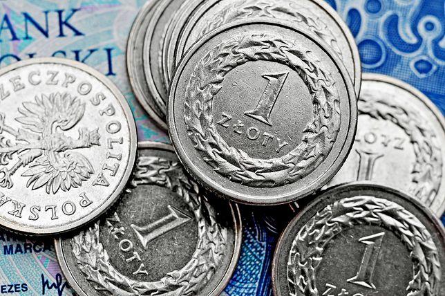 Co się będzie działo z polską walutą w 2018 r.? Czeka nas większa zmienność notowań