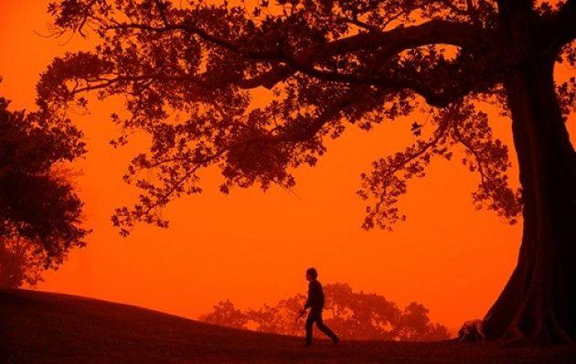 Tumany czerwonego kurzu nad Sydney