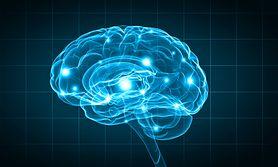 Jak dotlenić mózg? Zrób to z odpowiednią dietą (WIDEO)