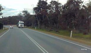 Ładunek wywraca ciężarówkę, samochód na ogromnych kołach i miniaturowe terenówki