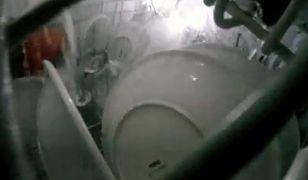 Jak działa zmywarka - zobacz nagrania z wnętrza komory myjącej