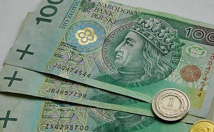 W 2016 roku złoty osłabnie, a ceny pójdą w górę. Kto straci na słabej walucie?