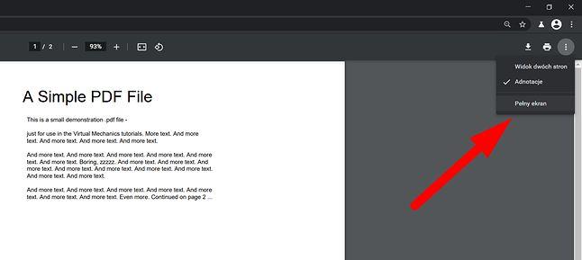 Chrome Canary oferuje opcję odczytu PDF-ów na pełnym ekranie, fot. Oskar Ziomek.