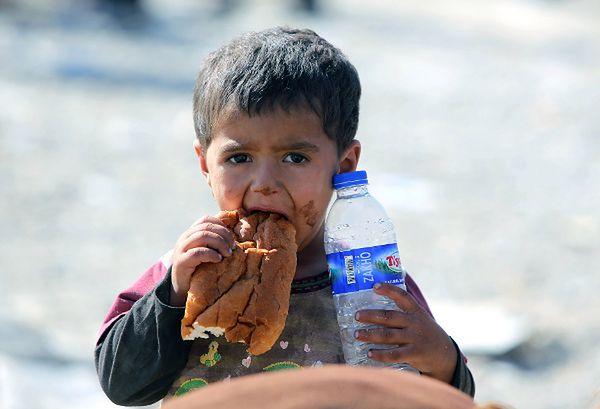 Ludobójstwo nr 73 - dramatyczny los jazydów w Iraku