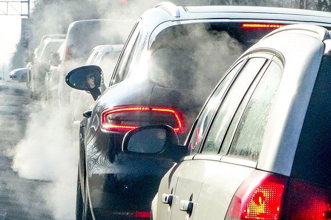 Samochody spalinowe znikną z Danii
