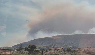 Zakynthos. W ciągu 24 godzin wybuchło w Grecji ok. 80 pożarów