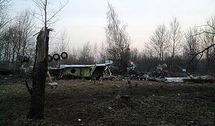 Szef MSZ: przygotowujemy skargę ws. zwrotu wraku Tu-154