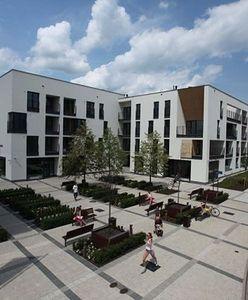Nowe osiedle: elsnerowskie Wilno
