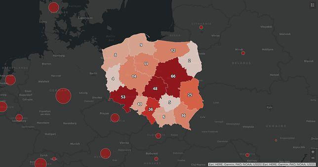 Koronawirus - mapa zarażonych w Polsce z podziałem na województwa