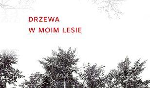 Drzewa w moim lesie