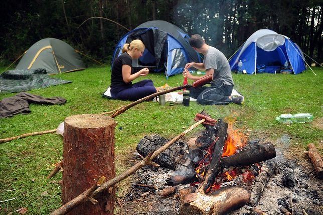 Od dzisiaj w Lasach Państwowych obowiązują nowe zasady biwakowania