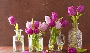 Niebanalne pomysły na tulipany w domu. Jak o nie dbać?