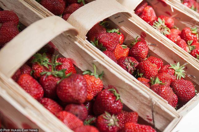 Wrześniowa pogoda sprzyja późnym odmianom truskawek