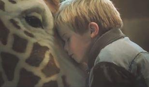 """""""Moja żyrafa"""" to pouczający film dla dzieci"""