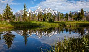 USA. W parku narodowym znaleziono ciało kobiety. To prawdopodobnie zaginiona blogerka