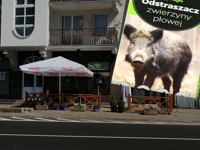 Lokal ze Świnoujścia ma już nowy taras. Poprzedni został oblany środkiem na dziki