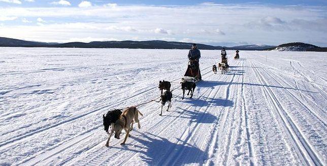Historyczny rekord wyprawy do Laponii