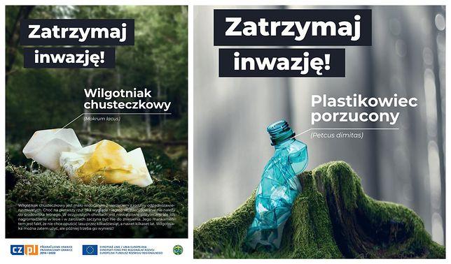 W 2017 roku z lasów wywieziono 114,3 tysięcy metrów sześciennych śmieci