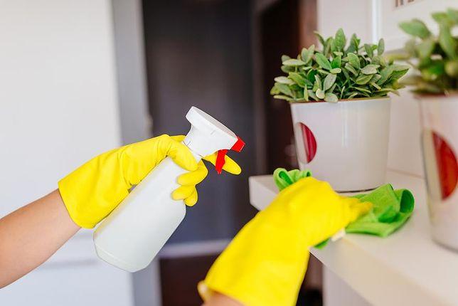 Generalne sprzątanie mieszkania