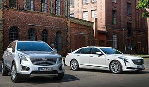 Ofensywa Cadillaca w Europie