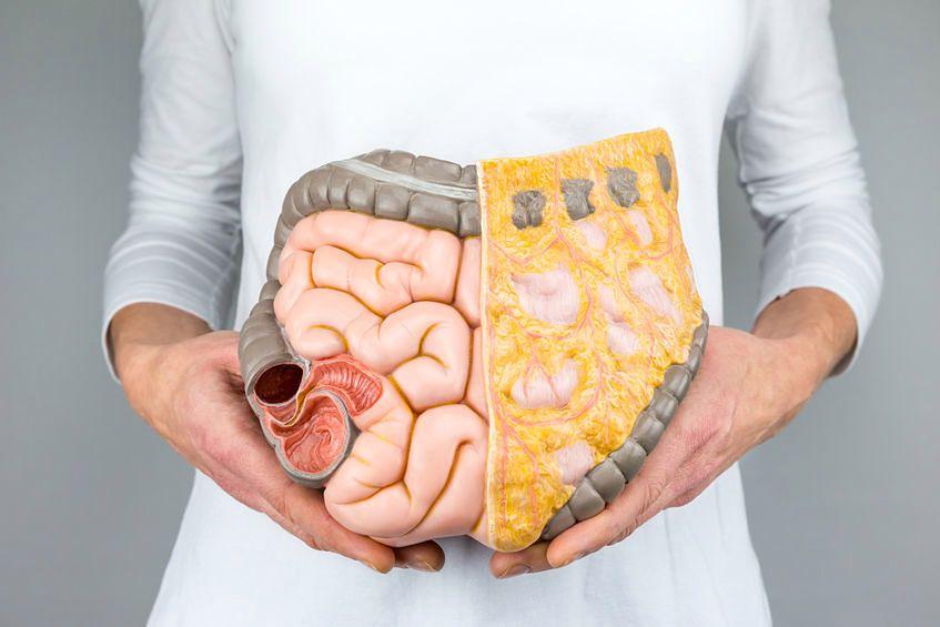 Rak jelit rozwija się w ukryciu i często jest diagnozowany zbyt późno
