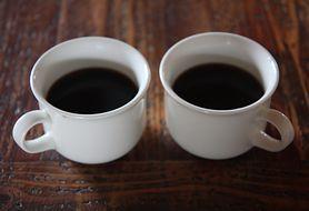 Kawa może ochronić cię przed gronkowcem