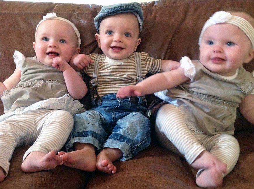 Daisy, Willow i Harrison mają już prawie rok